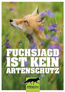 Fuchjagd artenschutz.JPG