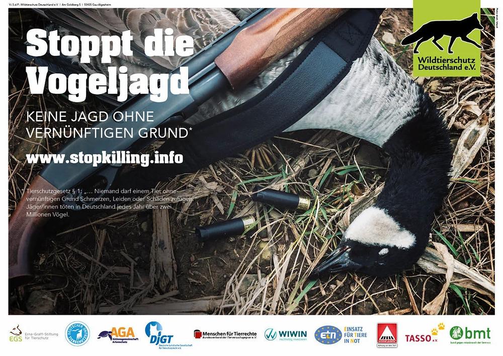 Vogeljagd abschaffen - Keine Jagd ohne vernünftigen Grund