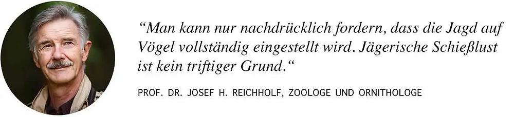 Prof. Reichholf: Die Jagd auf Vögel muss eingestellt werden