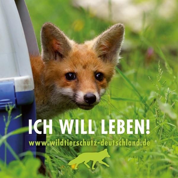Wildtierschutz Deutschland, Füchse