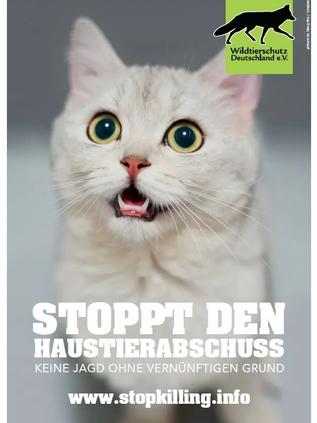 Stoppt den Katzenabschuss