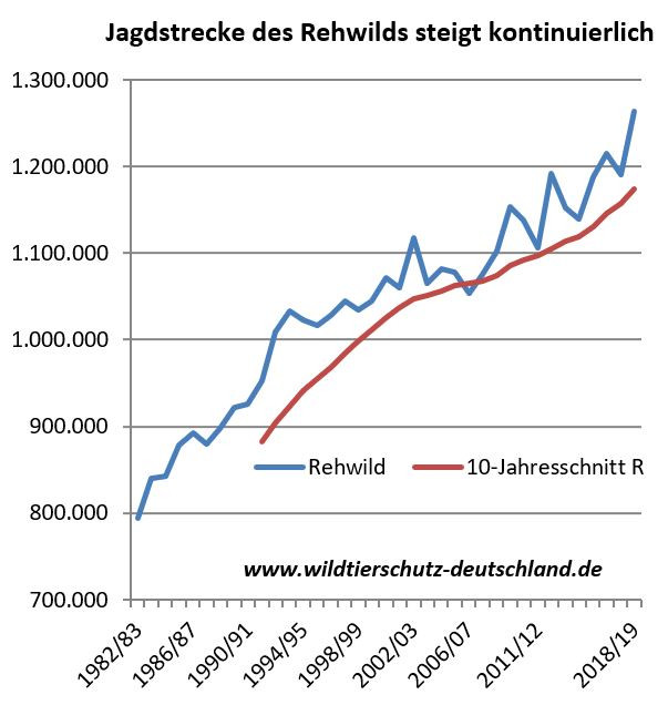 Jagdstatistik Rehwild Jagdstrecke steigt