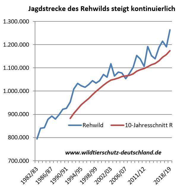 Jagdstrecken Rehe Rehwild steigen