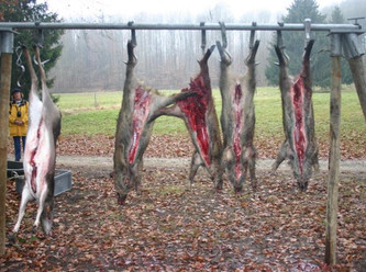 Jäger lösen keine Probleme, Jäger verursachen sie