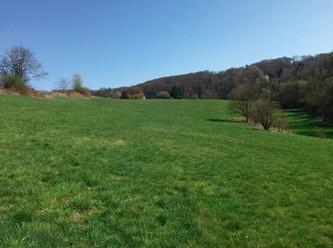 15 Hektar Feld, Wald und Wiese jagdfrei