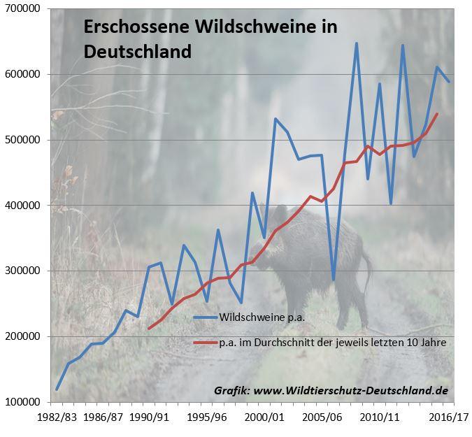 Erschossene Wildschweine in Deutschland