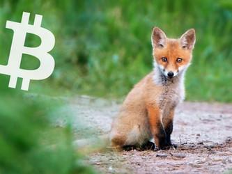 Möchten Sie Bitcoin spenden oder lieber Ethereum?