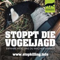 Vogeljagd-abschaffen-_FILEminimizer_.web