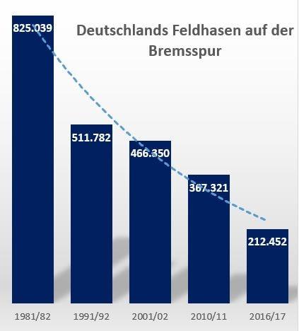 Statistik Feldhasen Jagdstatistik Strecke Hasen