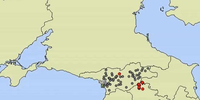 Afrikanische Schweinepest in Georgien 2007