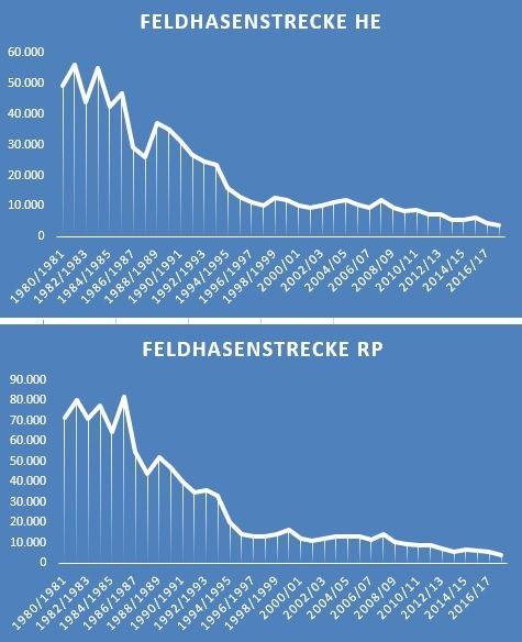 Feldhasenstrecken Hessen und Rheinland-Pfalz