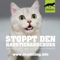 Haustierabschuss-Katze-w-_FILEminimizer_