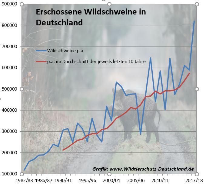 Erschossene Wildschweine in Deutschland Statistik