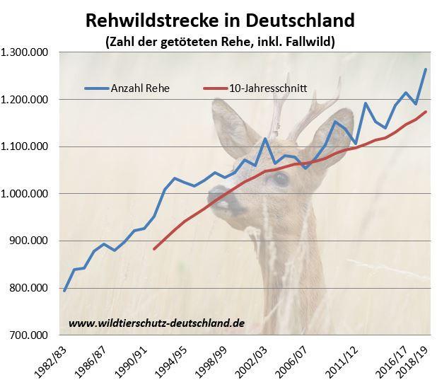 Jagdstatistik - so viele Rehe pro Jahr auf der Strecke. Jagdstrecke