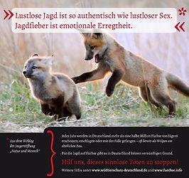 Lustlose Jagd.JPG