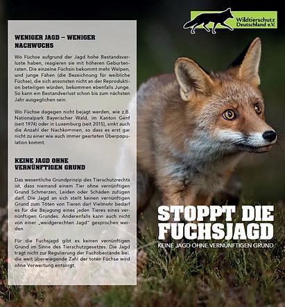 Vorderseite-Stoppt-die-Fuchsjagd-Ausschn