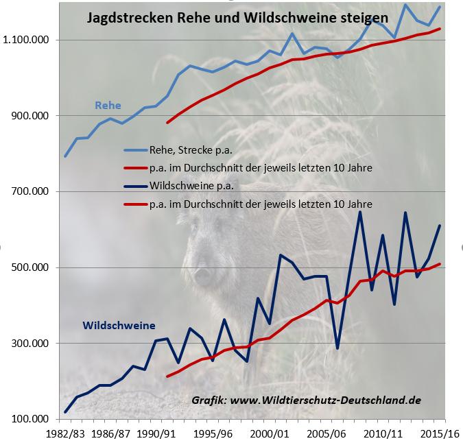 Jagdstatistik Anzahl getötete Rehe Wildschweine