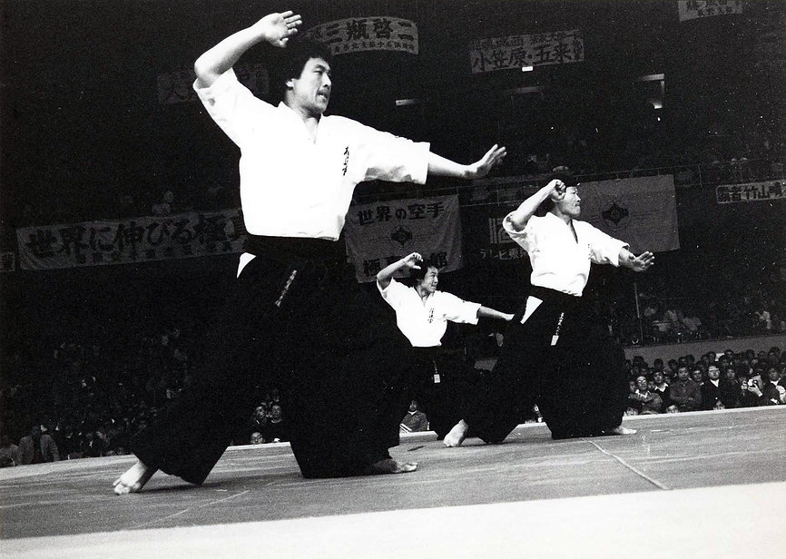 SaikoShihan939.jpg