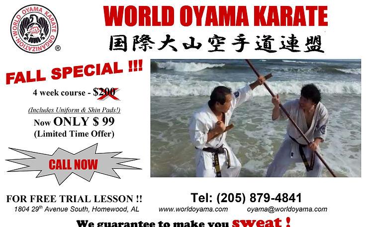 world-oyama-karate