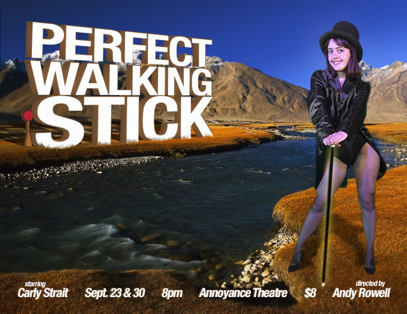 perfect walking stick poster.jpg
