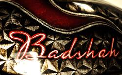 BADSHAH (26).jpg