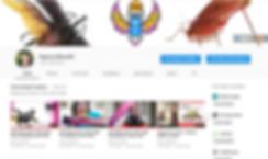 SciBugs Youtube Channel