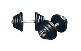 —Pngtree—fitness barbell_1855372(1).png