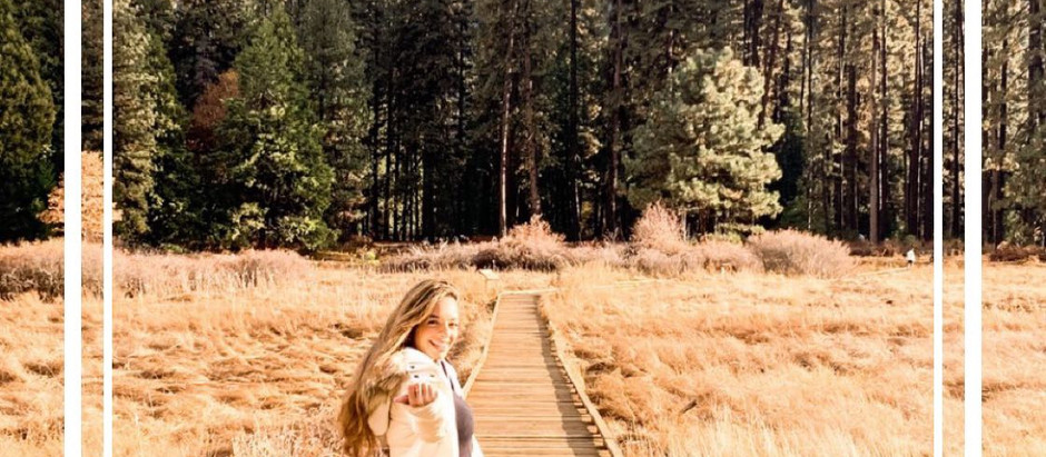 Yosemite National Park: What You Need To Know
