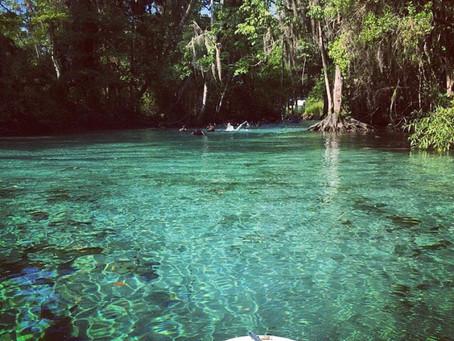 Crystal River: Florida's Hidden Gem