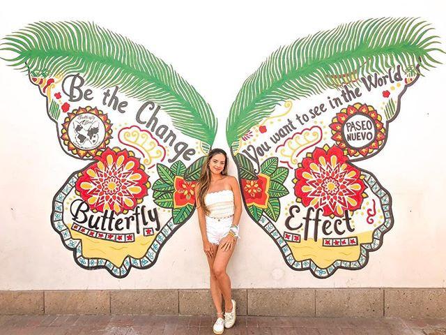 Butterfly wings wall in Santa Barbara