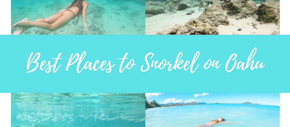 Best Places to Snorkel on Oahu