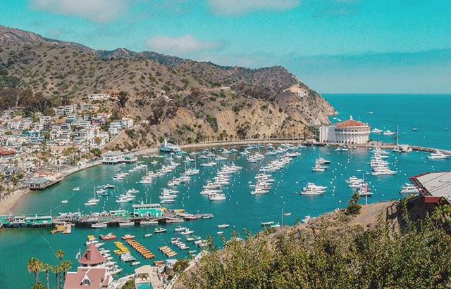 Catalina Island: A piece of the French Riviera in California