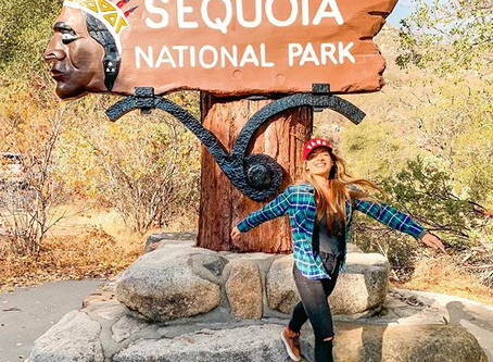 Sequoia & Kings Canyon National Parks