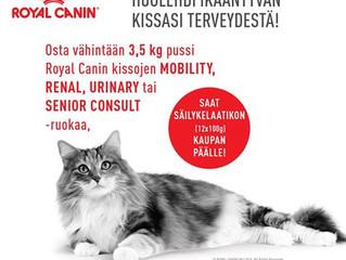 Huolehdi ikääntyvän kissasi terveydestä !