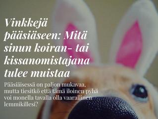 Vinkkejä pääsiäseen: Mitä sinun koiran- tai kissanomistajan tulee muistaa.