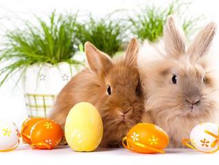 🐣 Pääsiäisen aukioloajat 🐣