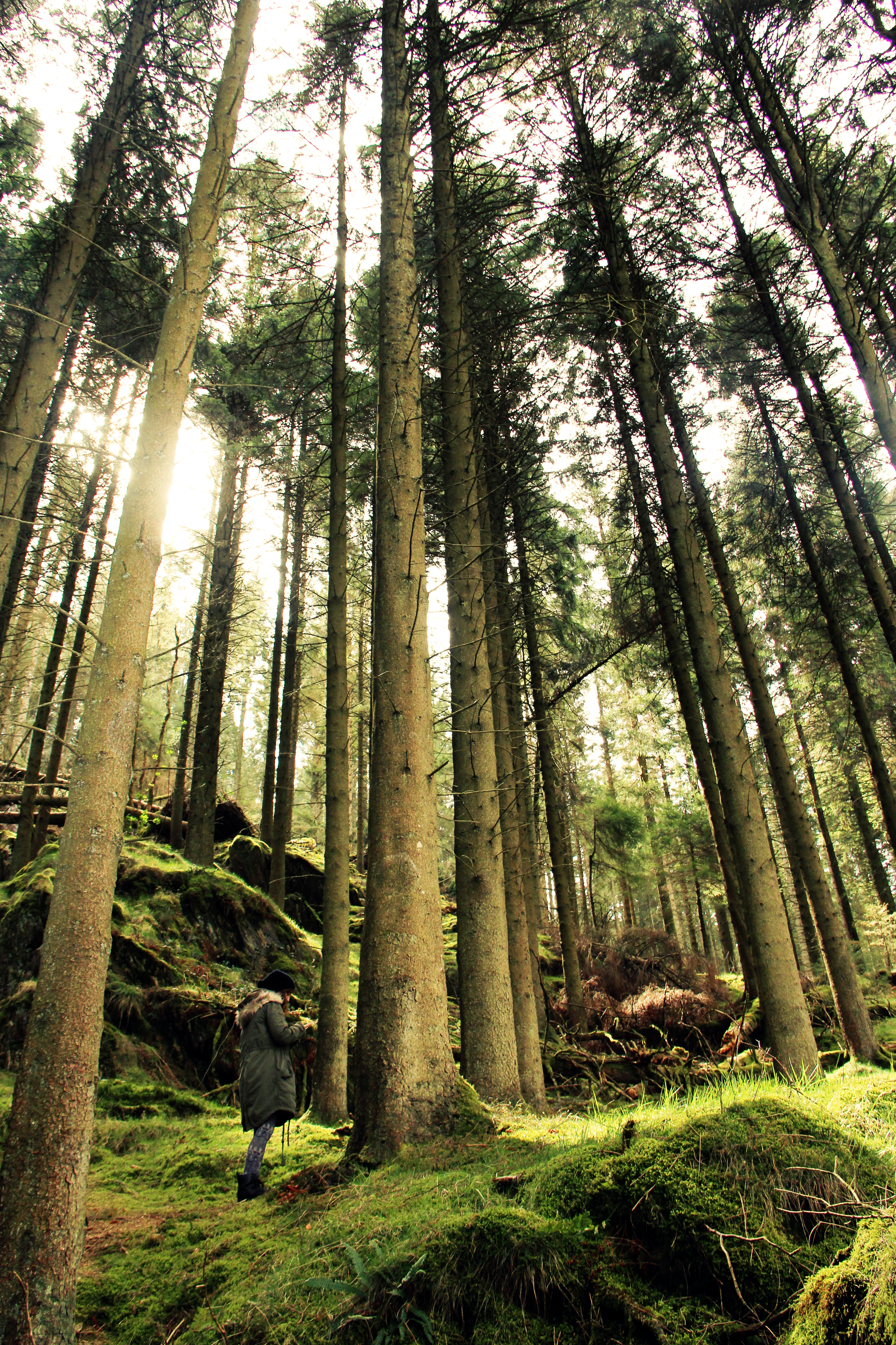 Elan Valley, Welsh Lake District.