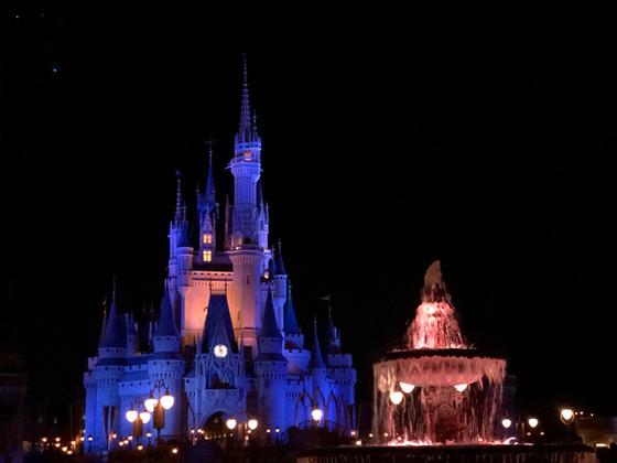 Magic Kingdom Passholder Night