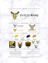 Twittendore Brand Kit