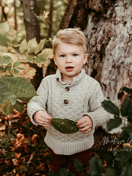 Fall Mini Sessions - Day 2 | Melissa Rosic Photography, WV Family Photographer