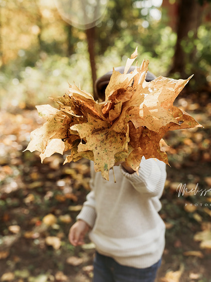 Fall Mini Sessions - Day 1 | Melissa Rosic Photography, WV Family Photographer