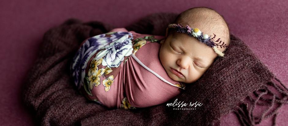 Sloane - Newborn Portrait Session | Melissa Rosic Photography, WV Newborn Photographer