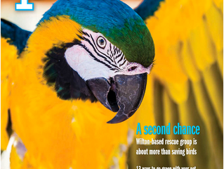 Second Chance Featured in Sacramento Pets Magazine