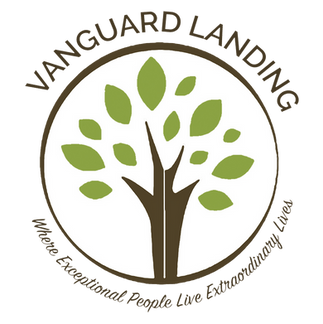 VGL-Logo-Full-Path.png