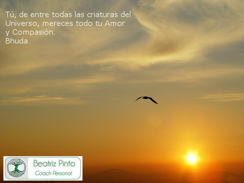 Egoísmo - coaching personal madrid centro