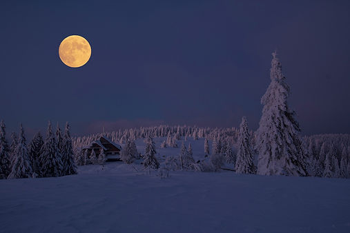 snow-3028621_1920.jpg