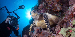 dive-experience-photography-md_01