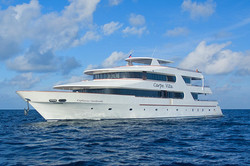 carpe-vita-liveaboard-scuba-diving-maldives-top