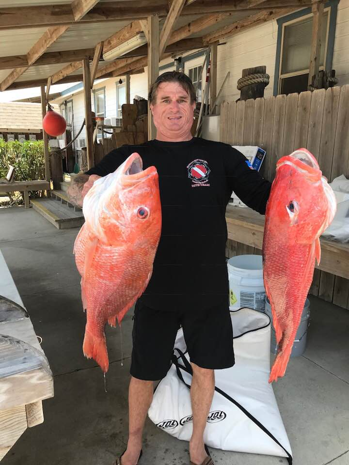 ken with snapper