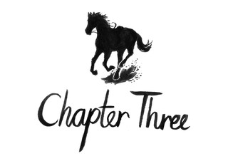 chapter 3.jpg